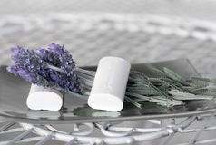 淡紫色肥皂温泉 库存图片