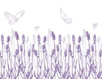 淡紫色边界 皇族释放例证