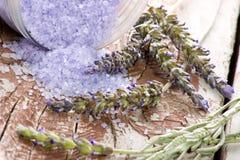 淡紫色集合温泉 库存图片