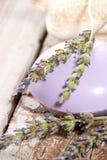 淡紫色集合温泉 免版税库存图片
