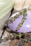 淡紫色集合温泉 库存照片