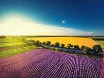 淡紫色领域鸟瞰图在普罗旺斯 免版税库存图片