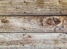 淡色木板条纹理背景 库存图片