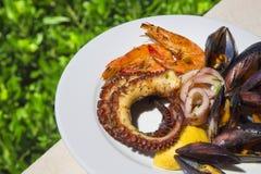 淡菜、章鱼、乌贼和虾的混合 库存照片