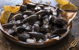 淡菜和蛤蜊在冰 库存图片