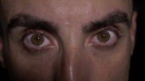 淡褐色眼睛极端接近的细节- 股票录像