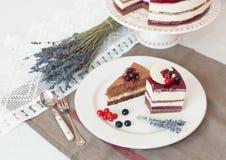 淡紫色两水平蛋糕 免版税库存照片