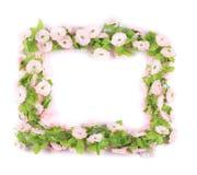 淡紫色人造花框架。 免版税库存图片