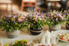 从淡紫色和草本的植物布置 库存照片