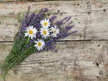 淡紫色和雏菊在葡萄酒木背景开花 库存照片