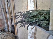 淡紫色在架子的花束 免版税库存照片