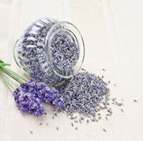 淡紫色开花新鲜和干燥 库存图片