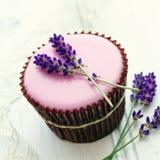 淡紫色杯形蛋糕 库存照片