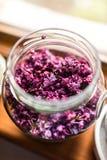 淡紫色果冻准备 库存照片