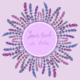 淡紫色框架 库存图片
