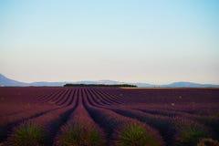 淡紫色海在南法国 库存图片