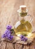 淡紫色温泉治疗 库存图片