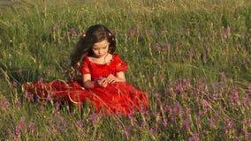 淡紫色的领域的美丽的小女孩 股票录像