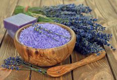 淡紫色盐海运 库存照片