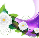 淡紫色花卉背景 图库摄影