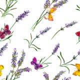 淡紫色花和蝴蝶 无缝的墙纸 水彩 免版税库存照片