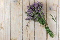 淡紫色花束 碗构成浮动的gerber温泉向毛巾扔石头 库存图片