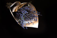 淡紫色花束 库存图片