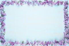 淡紫色花框架在蓝色木头的 免版税库存图片