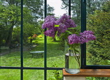淡紫色花瓶 免版税库存照片