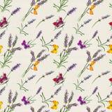 淡紫色花,蝴蝶 水彩无缝的样式 库存照片