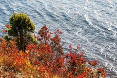 深刻的大海海纹理 库存图片