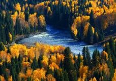 深刻的秋天 库存图片
