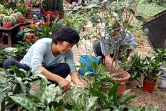 深圳瓷: 工作在庭院里的工作者 免版税图库摄影
