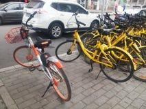 深圳,中国:分享风景的街道自行车 库存照片