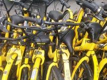 深圳,中国:分享风景的街道自行车 免版税库存照片