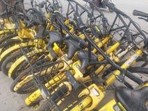 深圳,中国:分享风景的街道自行车 库存图片