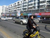 深圳,中国:liutang商业街风景 免版税库存照片