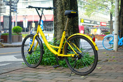 深圳,中国11日2017年:美丽的黄色自行车,停放在边路在一个晴天 免版税库存照片