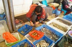 深圳,瓷:海鲜市场 库存照片
