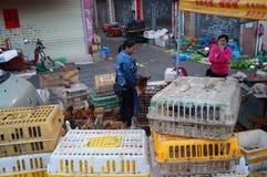 深圳,瓷:鸡摊位 库存照片