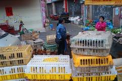 深圳,瓷:鸡摊位 图库摄影