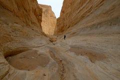 深峡谷在犹太沙漠 库存图片