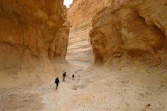 深峡谷在犹太沙漠 库存照片