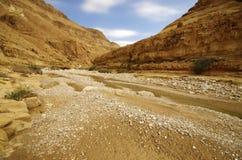 深峡谷-旱谷Zeelim在犹太沙漠,以色列 免版税库存照片