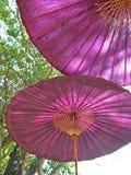 深桃红色的伞 库存图片