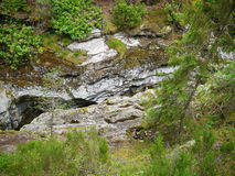 深森林山河 库存照片