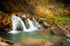 深森林瀑布在Carpathians 库存图片