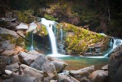 深森林瀑布在Carpathians 图库摄影