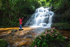 深森林瀑布 库存图片