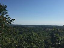 从深森林里边的惊人的看法 图库摄影
